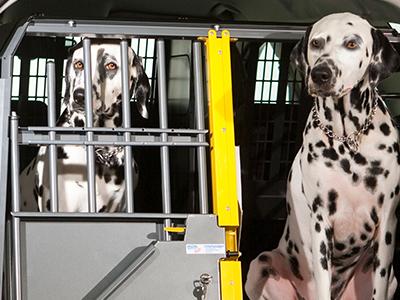 Kleinmetall Hundetransportboxen für Audi